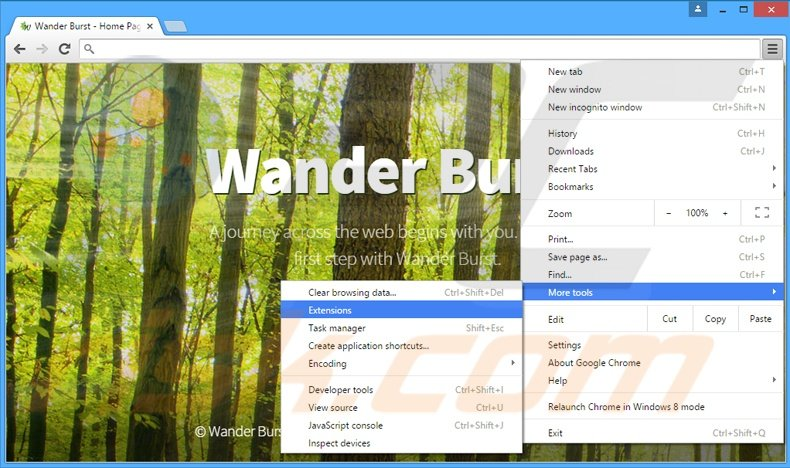 Rimuovere Wander Burst adware da Google Chrome step 1